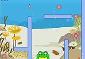 Cibles et grenouille